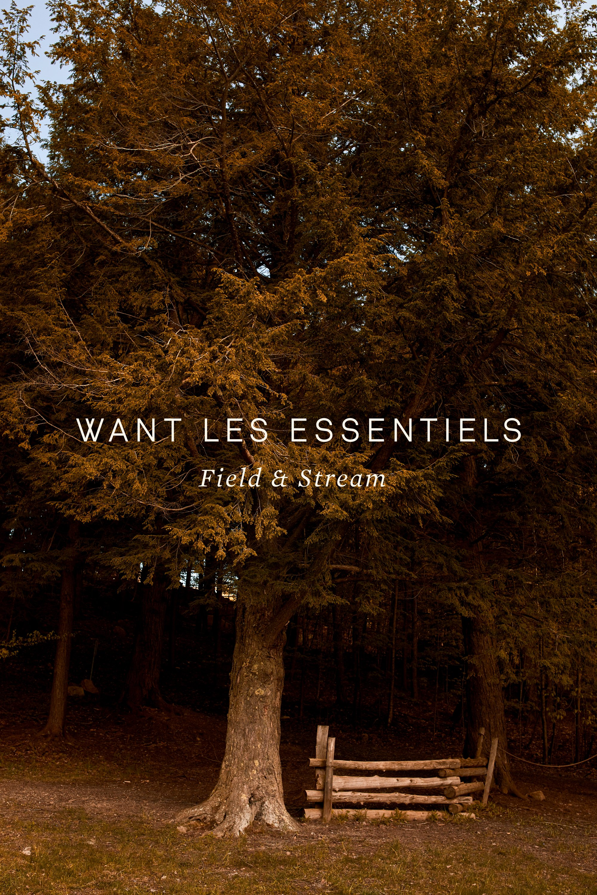 Want_Les_Essentiels_AW17_Womens_00